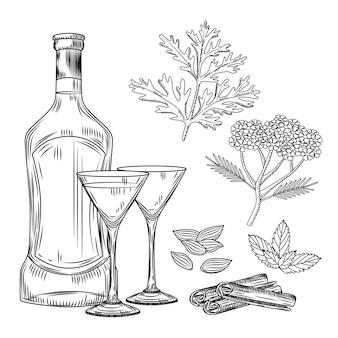 Set di vermouth. bicchiere da cocktail e bottiglia di vermouth, assenzio, achillea, cannella, menta, cardamomo. incisione in stile vintage