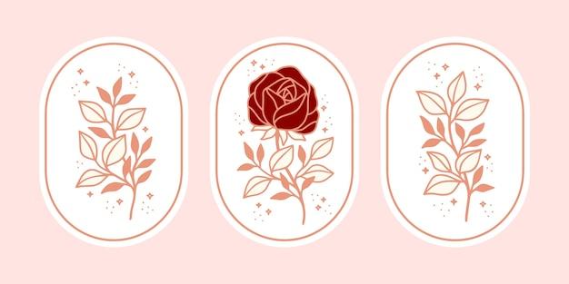 Set di elemento vintage botanico rosa rosa fiore e foglia ramo per marchio di bellezza o logo femminile floreale