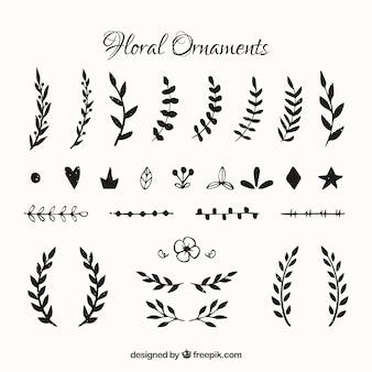 Set di foglie decorative d'epoca