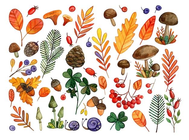 Insieme degli elementi e degli oggetti di autunno dell'acquerello foglie, funghi, coni, ghiande, sorba