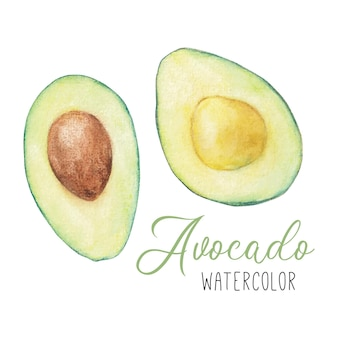 Set di clipart dell'acquerello con avocado