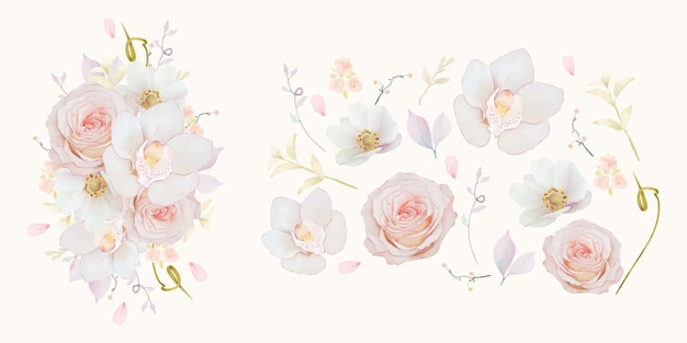 Impostare elementi acquerellati di orchidea rosa rosa e fiore di anemone