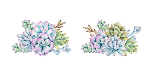 Set di mazzi di fiori succulenti dell'acquerello per il matrimonio