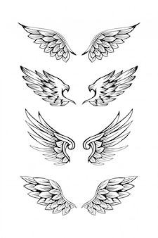 Set di illustrazione di ala