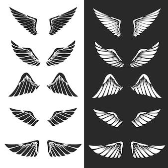Set di ali su sfondo bianco. elementi per logo, etichetta, emblema, segno. immagine