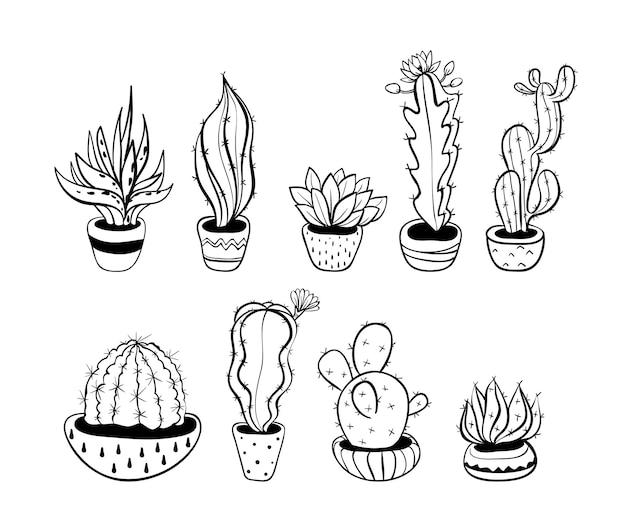 Set con cactus carino, illustrazione vettoriale eps 10.