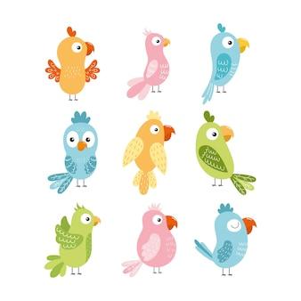 Un set con simpatici pappagalli per bambini.