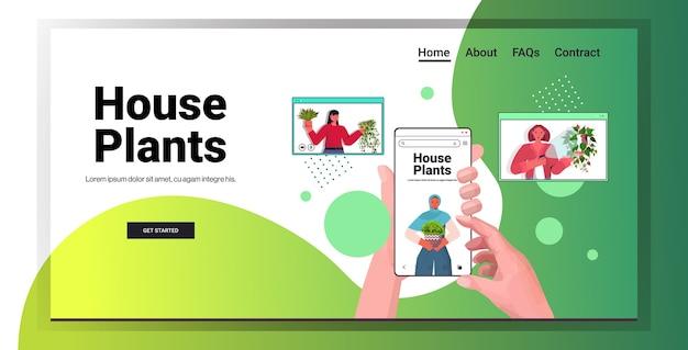 Impostare le donne che si prendono cura di piante d'appartamento mescolare casalinghe di razza discutendo durante la videochiamata nel browser web di windows verticale copia spazio orizzontale