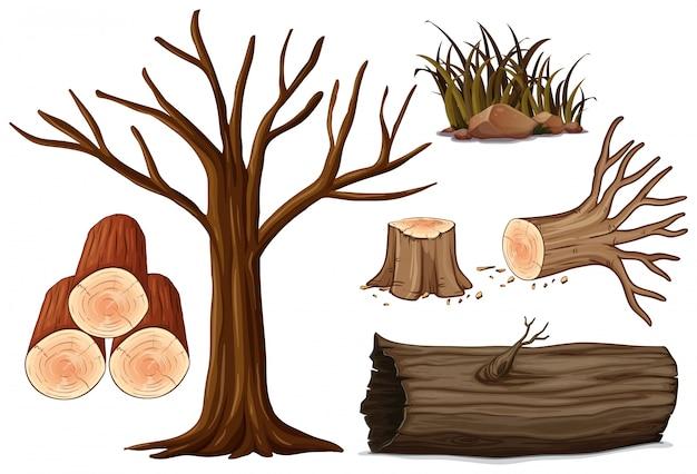 Un set di legno