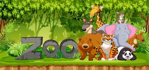 Set di animali dello zoo nella giungla
