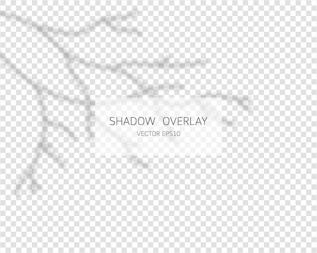 Effetto di sovrapposizione dell'ombra. ombra del ramo. illustrazione isolata ombre naturali.
