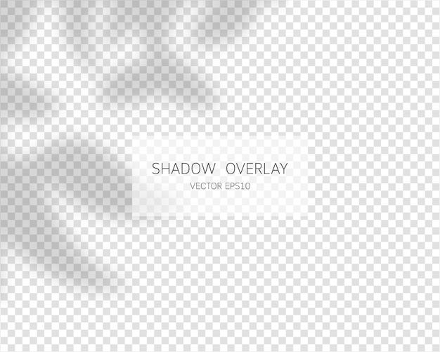 Effetto di sovrapposizione dell'ombra. illustrazione isolata ombre naturali.