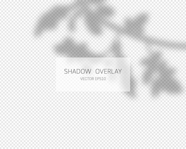 Effetto di sovrapposizione dell'ombra. ombre naturali isolate. illustrazione.