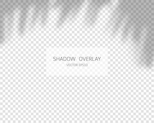 Effetto di sovrapposizione dell'ombra. ombre naturali isolate su sfondo trasparente. illustrazione.