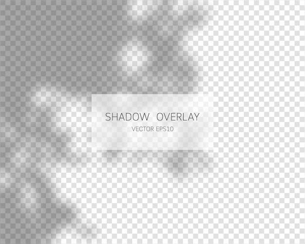 Effetto sovrapposizione ombra ombre naturali isolate su sfondo trasparente illustrazione vettoriale