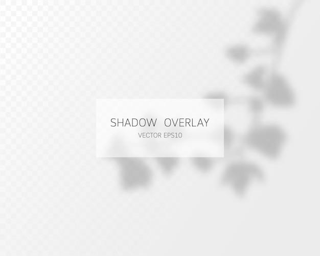 Effetto di sovrapposizione delle ombre. ombre naturali isolate