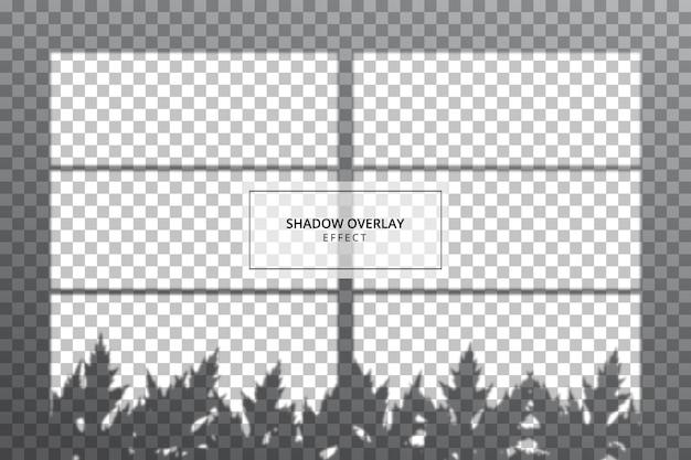 Effetto di sovrapposizione di ombre su sfondo trasparente