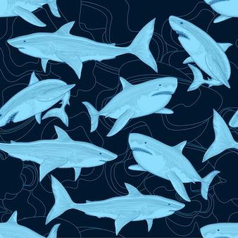 Modello senza cuciture di squalo. il mare dell'oceano nautico spaventa il grande pesce animale. pesce oceano, illustrazione di squalo della fauna selvatica del mare