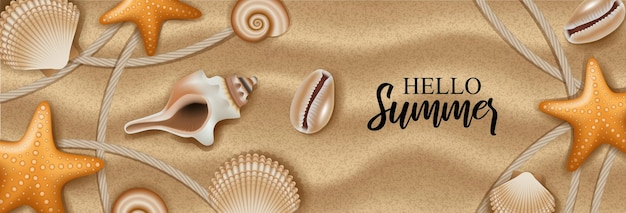 Conchiglie e stelle marine su sfondo sabbia