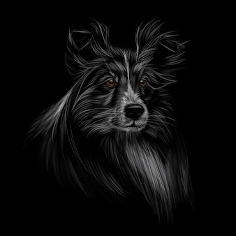 Sheltie testa ritratto su sfondo nero illustrazione vettoriale di vernici