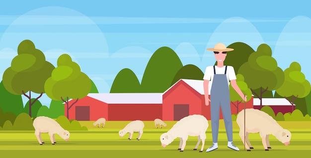 Pastore con bastone gregge gregge di pecore bianche sorridente agricoltore maschio allevamento pecore eco agricoltura concetto campagna paesaggio agricolo orizzontale piena lunghezza