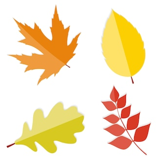 Lucido autunno foglie naturali illustrazione vettoriale. eps10