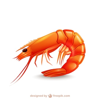 Icona shrimp Vettore Premium