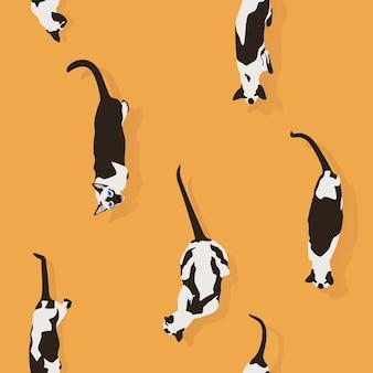 Gatti siamesi modello senza cuciture su sfondo arancione in stile piatto