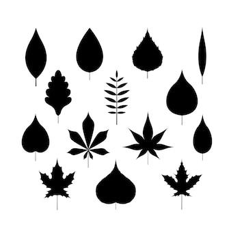 Siluetta delle foglie di autunno su fondo isolato bianco
