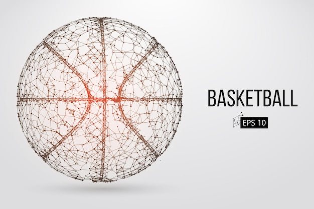 Sagoma di una palla da basket