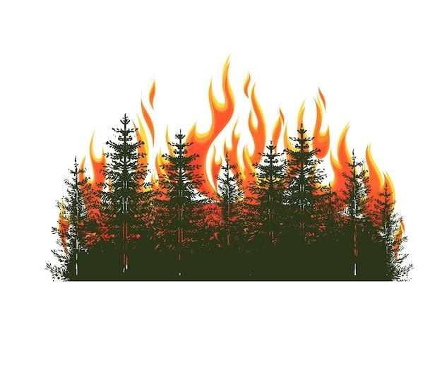 Silhouette di conifere su un incendio