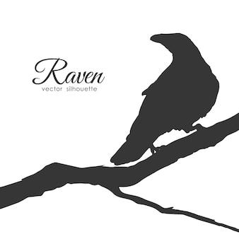 Silhouette di raven seduto su un ramo secco isolato su sfondo bianco.