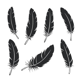 Set di piume di sagome. piuma di uccello nera del glifo, isolata.