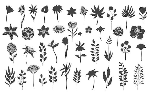 Elementi floreali di sagome. glifo monocromatico fogliame foglie naturali erbe. impostare l'illustrazione vettoriale botanica del fiore.