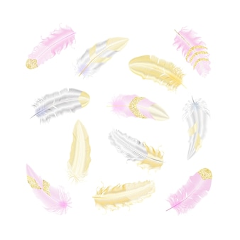 Piume glitter argento e oro. elementi in stile boho