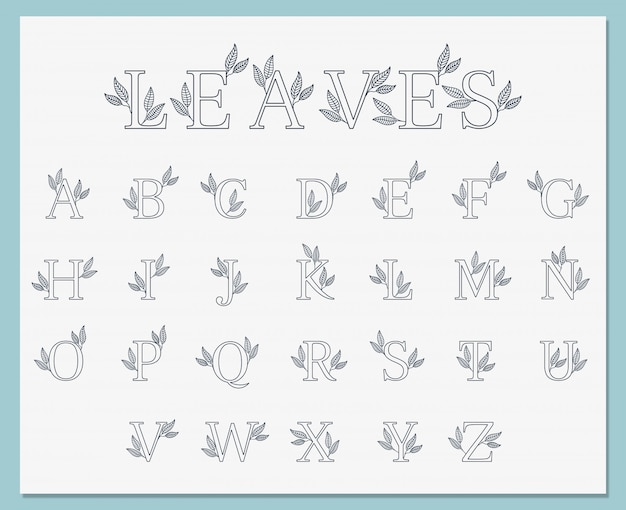 Collezione di font botanici linea semplice linea arte
