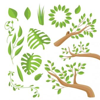 Pacchetto di foglie semplici vettoriale