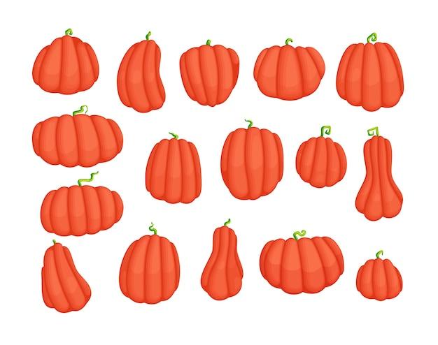 Insieme di disegni di zucca del fumetto di forma semplice. raccolta di illustrazioni sveglie del raccolto dell'azienda agricola con le verdure mature. icone isolate di simbolo di ringraziamento.