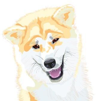Cane da schizzo akita inu sorrisi di razza giapponese
