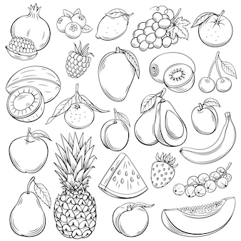 Schizzo set di icone di frutti e bacche. prodotto agricolo disegnato a mano della raccolta decorativa di stile retrò per il menu del ristorante, etichetta del mercato. mango, mirtillo, ananas, mandarino e così via.