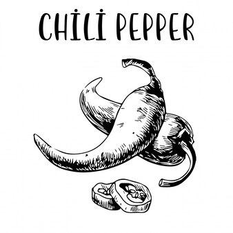 Schizzo disegnato a mano chili pepper