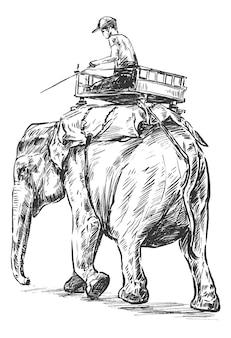 Schizzo dell'elefante dell'india sta lavorando il tiraggio della mano
