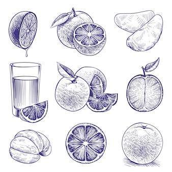 Schizzo arancione. disegno di arance incise, agrumi botanici, fiori e foglie. confezione di etichette di succo tropicale. insieme di doodle di vettore