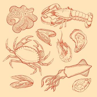 Schizzo di frutti di mare