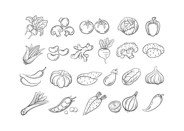 Schizzo vegetale icona set illustrazione vettoriale linea nera contorno schizzo verdure pomodoro e cipolla