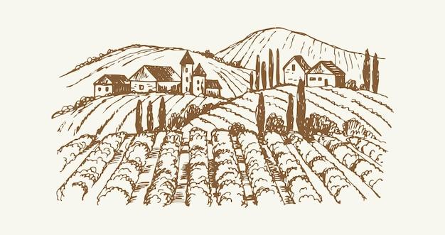 Schizzo del paesaggio del villaggio. fattoria di vigneti vintage, piantagione agricola disegnata a mano con case rustiche. illustrazione vettoriale carino accogliente sobborgo. sobborgo di piantagioni, paesaggio agricolo