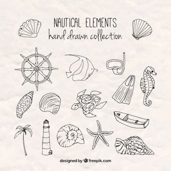 Sketches salor elementi