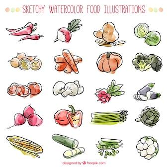 Sketches ingredienti acquerello