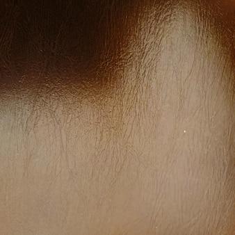 Priorità bassa strutturata della pelle di carta digitale della pelle