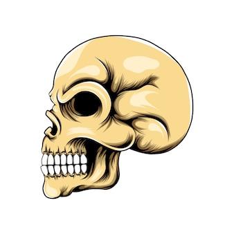 Testa del cranio con gli occhi bucati e il naso e posti di lato